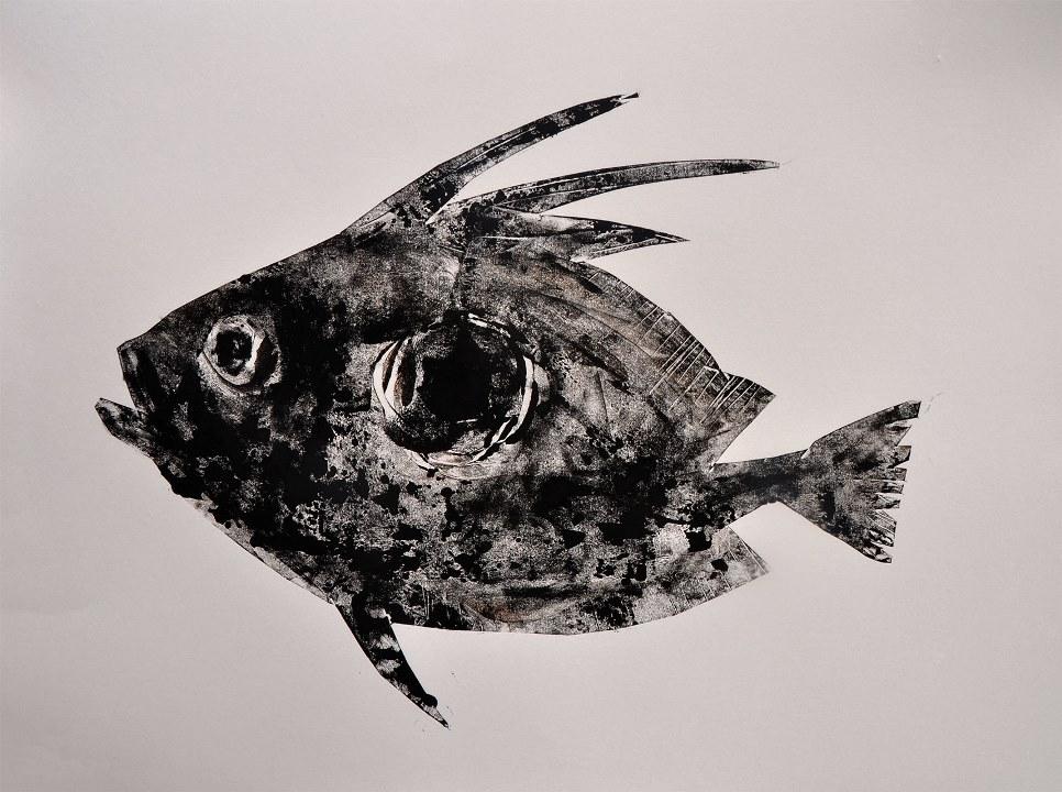 Black-FISH-Leon_Zakrajsek-03